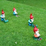 Even the gnomes do yard work.