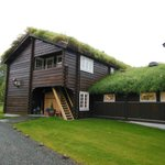love those grass roofs