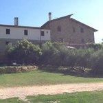 Un castello del 1300 tra gli ulivi
