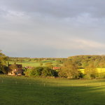 After the storm @ Oak Tree Farm Yoxford