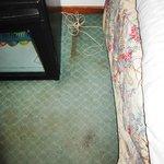 Qualità della moquette e della pulizia in camera