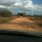 AFRICAN ROAD BLOCK, DELAYED ABOUT 20 CARS IN ALL FOR ABOUT 45 MINUTES
