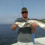Huge Snook if you like bass on Sterioids!