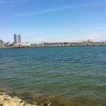 Coronado water view