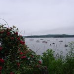 View of bay at Castine