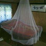 la chambre avec une moustiquaire trouée