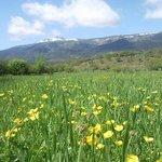 Vista primaveral del Valle del Paular