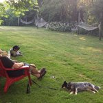 Hanging out in the backyard at Simmons Homestead Inn