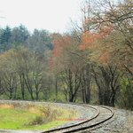 A view from the Blue Ridge Scenie Railroad