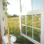 View of fields from kitchen in cottage 2