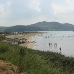 Inch Island in background