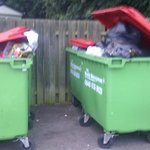 overflowing bins, the seagulls loved them!