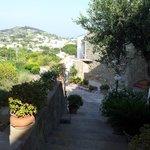 Veduta panoramica dal B&B Villa La Cesa