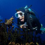 Frogfish and divemaster
