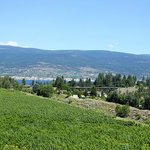 Kettle Valley Steam Train in the distance