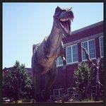 Life-like T-Rex