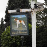 the Dog and Pheasant country pub