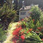 Ambrosia Gardens, July