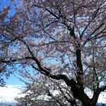 Foto de Toyoko Inn Yonezawaekimae