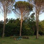 Dans le  magnifique parc du Manoir de la roseraie