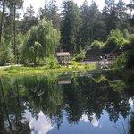 il laghetto nel Kurpark