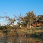 The Royal Madikwe