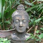Buda im Garten