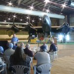 Unveiling the HP Halifax bomber project
