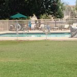 Actual photo. Salt water pool!!