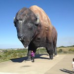 Largest Buffalo Statue in the World!