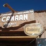 Photo de Canaan