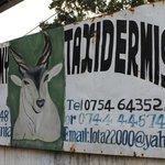 Taxidermist sign