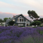 The Dungeness Barn House Bed and Breakfast Foto