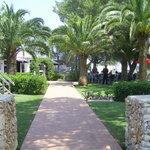 A peaceful shaded garden