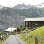 Scenic Hotel
