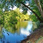 La rivière dans notre bois privé