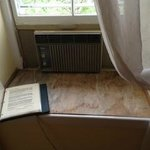 lovely plywood on the casement near air-conditioner and torn screen