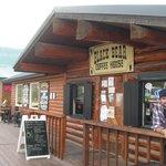 Black Bear Coffee Shopt
