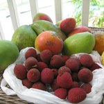 Catch of the day - mangos and lychees