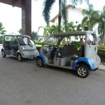 Small buggy fetching within the resorts