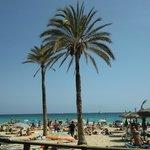 Пляж Cala Major