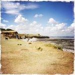 Kilve Beach