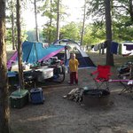 Nice spacious campsites