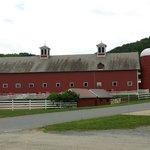 barn near cheese store