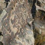 Uno de los tantos petroglifos del P. Arqueológico Paidahuén