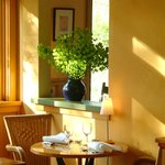 lovely light in the dining room