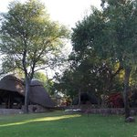 The gardens at Hornbill Lodge