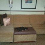 sofa/sleeper!