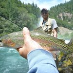 Beautiful Rainbow Trout I caught with Jack