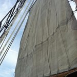 and the sails are up!